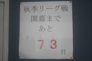 IMG_8404 (500x333)