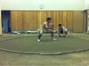 相撲写真1
